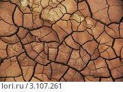 Купить «Потрескавшаяся сухая земля», фото № 3107261, снято 2 августа 2011 г. (c) Opra / Фотобанк Лори