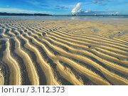 Купить «Морское дно во время отлива на пляже Боракай, Филиппины», фото № 3112373, снято 20 ноября 2010 г. (c) Николай Охитин / Фотобанк Лори
