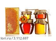 Купить «Мед в стеклянных банках, соты и желтый цветок», фото № 3112697, снято 23 февраля 2011 г. (c) Николай Охитин / Фотобанк Лори