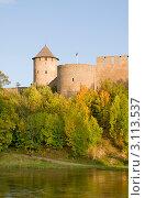 Купить «Ивангородская крепость», эксклюзивное фото № 3113537, снято 16 сентября 2011 г. (c) Александр Щепин / Фотобанк Лори