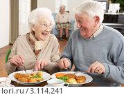 Купить «Мужчина и женщина в возрасте обедают в центре по уходу за пожилыми людьми», фото № 3114241, снято 7 января 2011 г. (c) Monkey Business Images / Фотобанк Лори