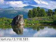 Купить «Озеро на фоне гор летним днем. Алтай», фото № 3118181, снято 18 июля 2011 г. (c) Яков Филимонов / Фотобанк Лори