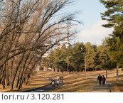 Храм в парке (2011 год). Редакционное фото, фотограф Котенко Андрей Владимирович / Фотобанк Лори