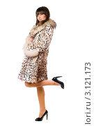 Купить «Девушка в меховом пальто стоит на одной ноге», фото № 3121173, снято 4 февраля 2010 г. (c) Сергей Сухоруков / Фотобанк Лори