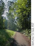 Тропинка в лесу. Стоковое фото, фотограф Юрий Васильев / Фотобанк Лори