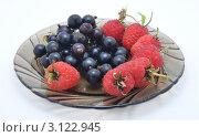 Купить «Тарелка с ягодами», фото № 3122945, снято 25 июня 2010 г. (c) Лищук Руслан Викторович / Фотобанк Лори