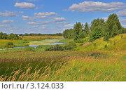 Летний пейзаж с рекой. Стоковое фото, фотограф Елена Коромыслова / Фотобанк Лори