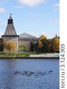 Утки у стен кремля во Пскове (2011 год). Редакционное фото, фотограф Ольга Чудина / Фотобанк Лори