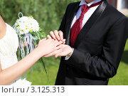 Купить «Свадьба. Жених надевает кольцо на палец невесте», фото № 3125313, снято 20 октября 2018 г. (c) Sergey Nivens / Фотобанк Лори