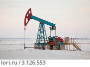 Купить «Насос для добычи нефти», эксклюзивное фото № 3126553, снято 7 января 2012 г. (c) Gagara / Фотобанк Лори