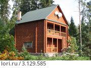 Дом в лесу. Стоковое фото, фотограф Павел Карасёв / Фотобанк Лори