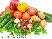 Купить «Свежие овощи на белом фоне», фото № 3133033, снято 1 октября 2011 г. (c) Ласточкин Евгений / Фотобанк Лори