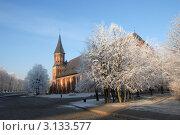В зимнем убранстве (2011 год). Редакционное фото, фотограф Svet / Фотобанк Лори