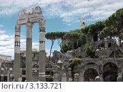 Руины Римского Форума, Капитель, Рим, Италия (2008 год). Стоковое фото, фотограф ElenArt / Фотобанк Лори