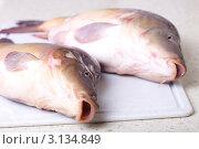 Свежая рыба на разделочной доске. Стоковое фото, фотограф Яна Королёва / Фотобанк Лори