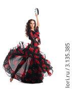 Купить «Танцовщица танцует цыганский танец с бубном», фото № 3135385, снято 19 февраля 2019 г. (c) Гурьянов Андрей / Фотобанк Лори