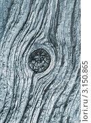 Купить «Поверхность старого дерева, фон», фото № 3150865, снято 6 июля 2011 г. (c) Икан Леонид / Фотобанк Лори