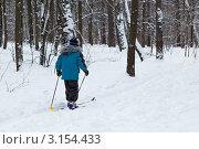 Купить «Школьник на лыжах в зимнем парке», эксклюзивное фото № 3154433, снято 15 января 2012 г. (c) Родион Власов / Фотобанк Лори