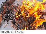 Костёр. Стоковое фото, фотограф Светлана Бакланова / Фотобанк Лори