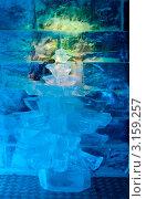 Купить «Ледяная комната в тереме Снегурочки. Ледяная елочка», фото № 3159257, снято 17 января 2012 г. (c) ElenArt / Фотобанк Лори