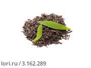 Китайский чай Пу Эр и свежие чайные листья на белом фоне. Стоковое фото, фотограф Константин Сидоров / Фотобанк Лори