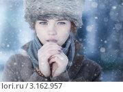Купить «Зимний портрет девушки в холодных тонах», фото № 3162957, снято 25 декабря 2011 г. (c) chaoss / Фотобанк Лори