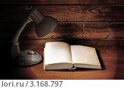 Лампа и книга. Стоковое фото, фотограф vlntn / Фотобанк Лори
