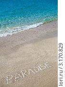 Надпись Paradise ракушками на песке. Стоковое фото, фотограф Анна Лисовская / Фотобанк Лори