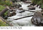 Горный ручей. Стоковое фото, фотограф Фомина Марина / Фотобанк Лори