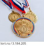 Купить «Три разные медали за первое место на светлом фоне», эксклюзивное фото № 3184205, снято 23 января 2012 г. (c) Игорь Низов / Фотобанк Лори