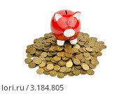 Купить «Красная свинья-копилка стоит на куче монет», фото № 3184805, снято 19 ноября 2011 г. (c) Elnur / Фотобанк Лори
