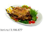 Купить «Запеченная курица на керамическом блюде», фото № 3186877, снято 20 августа 2011 г. (c) Elnur / Фотобанк Лори
