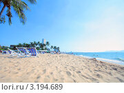 Пляж Жомтьен. Стоковое фото, фотограф Диана Карлова / Фотобанк Лори
