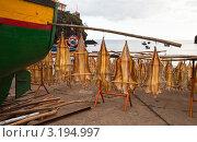 Купить «Сушка рыбы на берегу острова Мадейра у деревни Камара ди Лобуш (Camara de Lobos)», фото № 3194997, снято 23 декабря 2011 г. (c) Виктория Катьянова / Фотобанк Лори