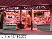 Купить «Франция. Париж.», фото № 3195373, снято 18 января 2012 г. (c) natalya ryzhko / Фотобанк Лори