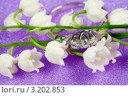 Купить «Кольцо с бриллиантами на фоне весенних цветов - лесного ландыша», фото № 3202853, снято 28 мая 2011 г. (c) ElenArt / Фотобанк Лори