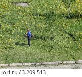 Купить «Мужчина косит траву», фото № 3209513, снято 2 июня 2011 г. (c) Литвинова Евгения / Фотобанк Лори