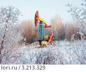 Нефтяной насос зимой между веток. Стоковое фото, фотограф Григорий Иваньков / Фотобанк Лори