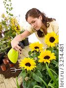 Купить «Серьезная девушка с пульверизатором опрыскивает подсолнухи», фото № 3214481, снято 1 мая 2010 г. (c) CandyBox Images / Фотобанк Лори