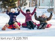 Купить «Две девочки и мальчик, сидя на тюбингах на фоне горки, подняли руки вверх», эксклюзивное фото № 3220701, снято 29 января 2012 г. (c) Игорь Низов / Фотобанк Лори