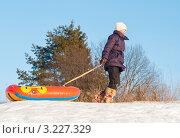 Купить «Девочка идёт с тюбингом», эксклюзивное фото № 3227329, снято 5 февраля 2012 г. (c) Игорь Низов / Фотобанк Лори