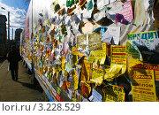Стена с наклеенными объявлениями вдоль тротуара с уходящим вдаль человеком (2011 год). Редакционное фото, фотограф Виктория Кучугурова / Фотобанк Лори
