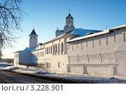 Купить «Ярославль, Спасо-Преображенский монастырь», фото № 3228901, снято 28 января 2012 г. (c) ElenArt / Фотобанк Лори
