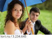 Купить «Жених и невеста под зонтиком на природе», фото № 3234645, снято 18 сентября 2011 г. (c) Дмитрий Яковлев / Фотобанк Лори