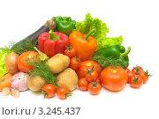 Купить «Свежие овощи, изолированно на белом фоне», фото № 3245437, снято 18 ноября 2011 г. (c) Ласточкин Евгений / Фотобанк Лори