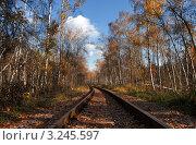 Железная дорога. Стоковое фото, фотограф Сергей Илясов / Фотобанк Лори