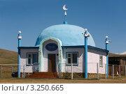 Мечеть в Ташанте. Стоковое фото, фотограф Сергей Сулоев / Фотобанк Лори