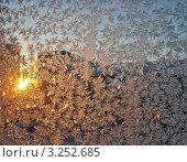 Купить «Иней на стекле на фоне заката. Зимний фон», фото № 3252685, снято 21 января 2009 г. (c) Светлана Ильева (Иванова) / Фотобанк Лори