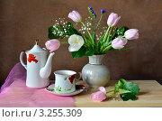 Купить «Натюрморт с чашкой чая и букетом», фото № 3255309, снято 15 февраля 2012 г. (c) Julia Ovchinnikova / Фотобанк Лори