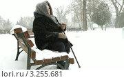 Купить «Одинокая пожилая женщина сидит на скамейке в зимнем парке», видеоролик № 3255681, снято 31 января 2012 г. (c) Владимир Никулин / Фотобанк Лори